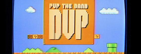 PUP DVP